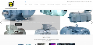 Screengrab of new EES Limited website March 2019